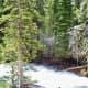 Hidden Falls Trail at Grand Teton National Park in Wyoming