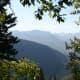 Mountain vista through the trees