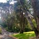 The Botanic Gardens are full of steep walks.