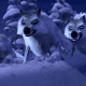 The pack of wolves; Frozen, 2013