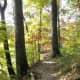Hiking along Trail 7 and Ogle Lake