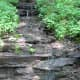 Water trickling out of the canyon wall
