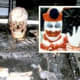 Bones Found In The Crawl Space Of John W Gacy House