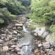 your-guide-to-yakushima-with-no-car