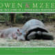 Owen & Mzee: The True Story of a Remarkable Friendship by Isabella Hatkoff