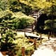 golden-gate-park-japanese-tea-garden-museums-something-for-everyone