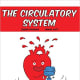 The Circulatory System (Building Blocks of Life Science) by Joseph Midthun