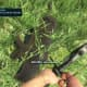 Far Cry 3 Crafting Guide - Extended Syringe Kit: Target down!