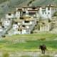 Lingshed gompa, Zanskar/Ladakh.