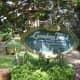 Herbal and Medicinal Garden