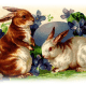 Free vintage Easter images: two Easter bunnies with egg and flowers