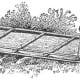 Drawing of Toboggan
