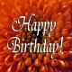 Happy Birthday orange floral.