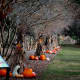 Annual Autumn Gardenfest in Savannah, Georgia Top Cities in America for Fall Traveling