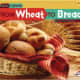 From Wheat to Bread (Start to Finish, Second Series: Food) by Stacy Taus-Bolstad