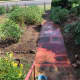Front pathway and gardens, Murgon