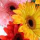 your-wedding-flowers