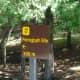 Sign directing us to Petroglyphs Provincial Park.