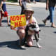 """Official events start with the """"Dog Parade"""" here a volunteer is walking a dog in need of an owner."""
