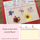 Pressed flower board