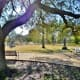 McGovern Centennial Gardens