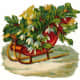 Vintage red sled filled with holly