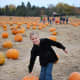 pumpkin-patches-in-central-oregon