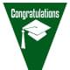 Graduation flag decoration -- green