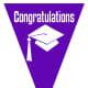 Graduation flag decoration -- purple