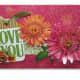 homemade-handmade-summer-greeting-cards-to-make