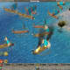 Empire Earth Gameplay