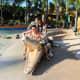 Amazing animal figures in Coolwaves Waterpark Resort!