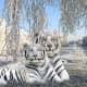white-tiger-tattoo-designs-white-tiger-tattoo-ideas-white-tiger-tattoo-meanings-and-tattoo-pictures