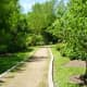 Trail near Butterfly Garden