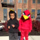 Front view of Red's Angry Bird costume, but Bomb didn't want to cooperate!  Lol