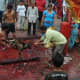 Nepal is predominantly Hindu. Animal sacrifice is common amongst the Hindus.