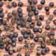 bathua seeds