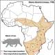 Black Rhino range map