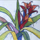 Outlined Bromeliad