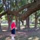 Carolyn H Wolff Park