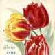 D.M. Ferry & Co. vintage seed packet clip art -- 1894