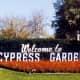 photos-of-the-beautiful-cypress-gardens-in-florida