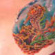 seahorse-tattoos-and-designs-seahorse-tattoo-meanings-and-ideas-seahorse-tattoo-gallery