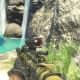 Archaeology 101 - Gameplay 01: Far Cry 3 Relic 60, Shark 30.