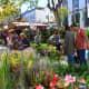 Flower Festivities street market 2019