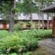 Tamozawa's large courtyard garden in summer.
