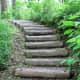 A path through Tamozawa villa's garden.
