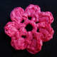 Photo #3: OPEN PUFF Flower Front View