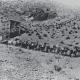 Mule train hauling silver ore