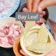 Adding Bay Leaf